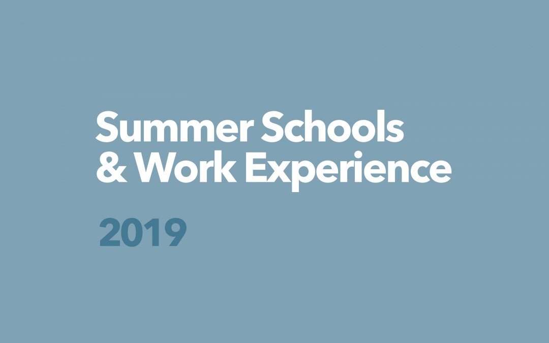 Protetto: DCG Summer Schools & Work Experience / 2019